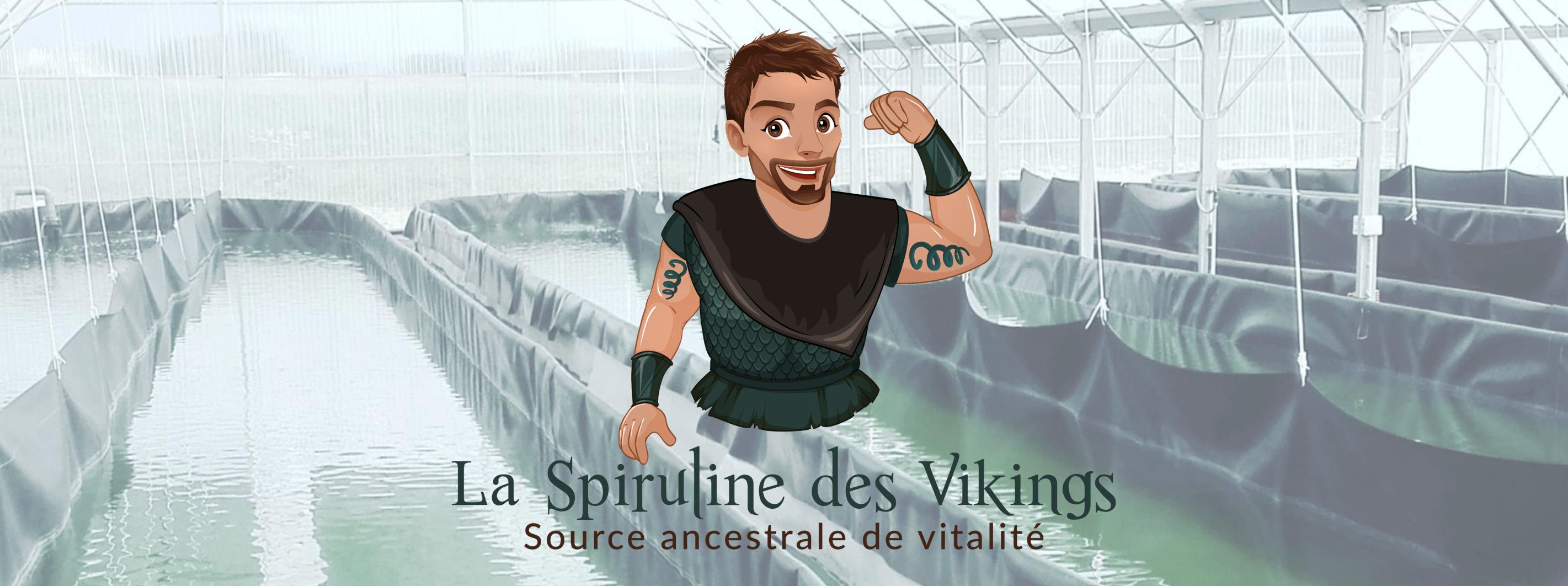 Spiruline des Vikings